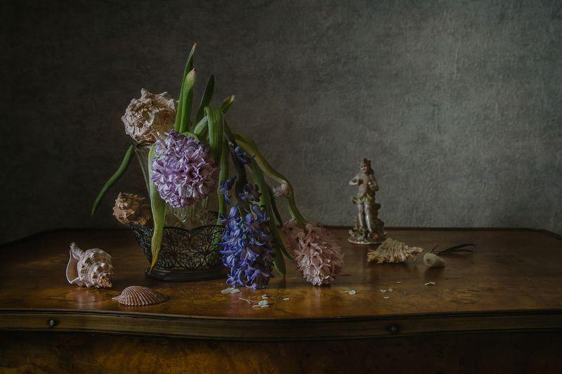 натюрморт, стекло, цветы, гиацинты, ракушки, статуэтка Про гиацинтыphoto preview