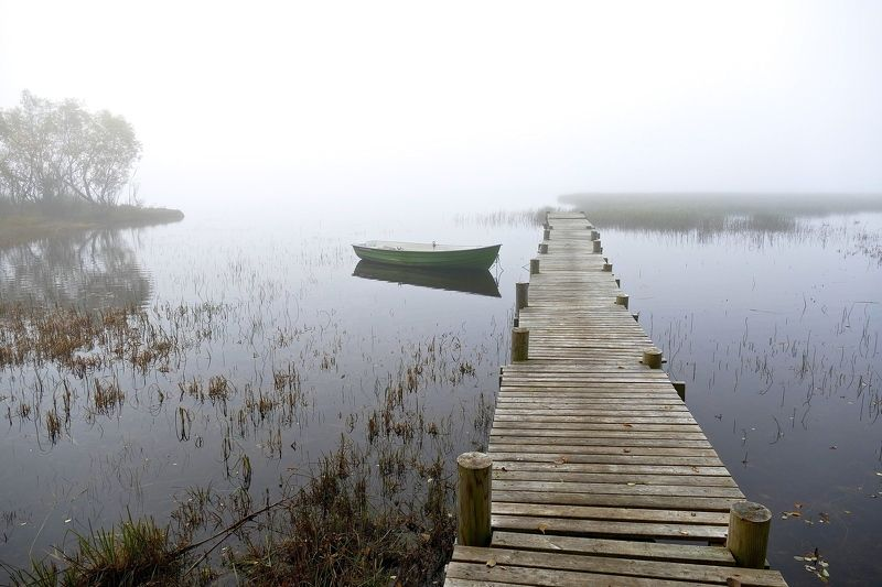 Landscapes, nature, Norway, fog, boat, lake, water, mist, trees, pier, reflection, mood, harmony, peace,  Утро туманное...photo preview