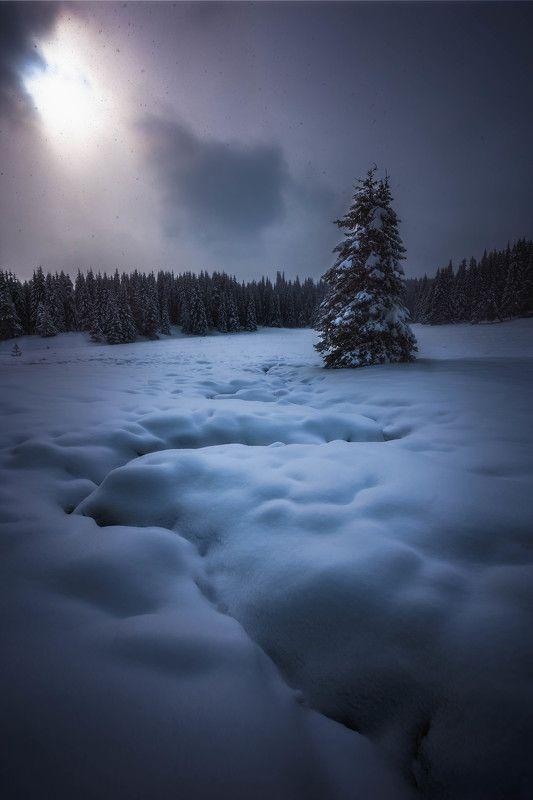 #landscape#nature#winter Winter around usphoto preview