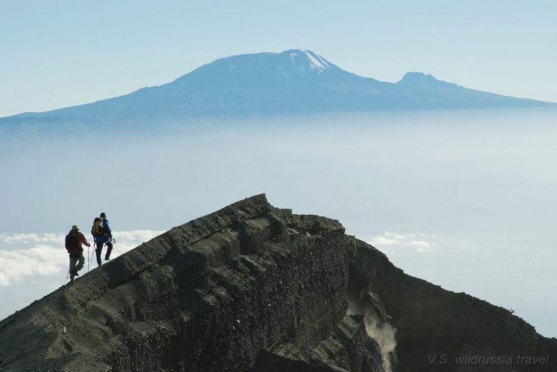 килиманджаро, африка, вершина, восхождение, спорт, экстрим, высота, альпинизм, небо, обрыв, горы, перспектива, танзания, путешествие, приключение, шагнивнеизведанное Дорога на Килиманджароphoto preview