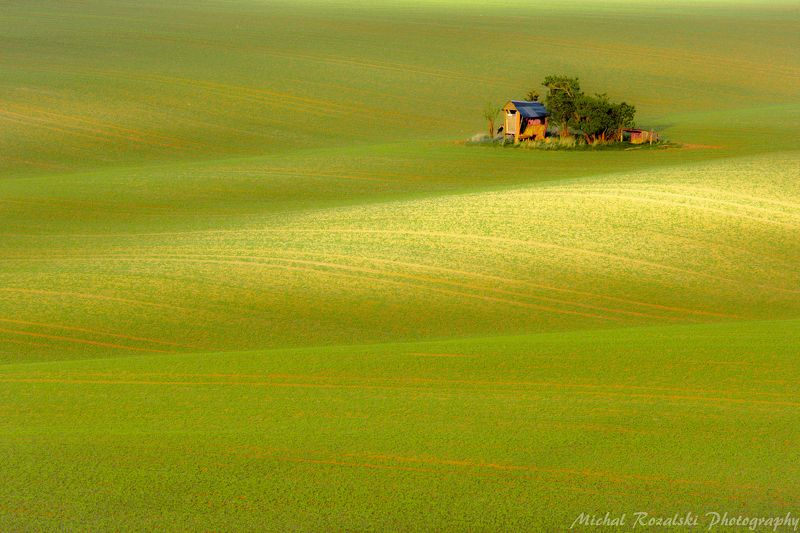 moravia, ,hills, ,rolling, ,spring, ,green, ,fields, ,agriculture, ,season, ,landscape, , Pasturephoto preview