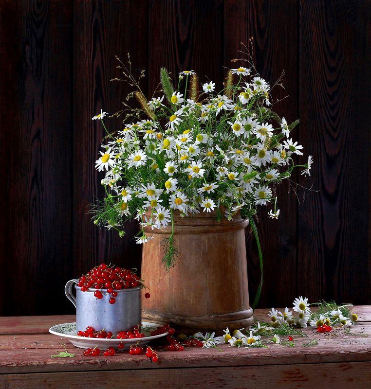 натюрморт, фотонатюрморт, лето, цветы, ромашки, смородина,  наталья казанцева Летние радостиphoto preview
