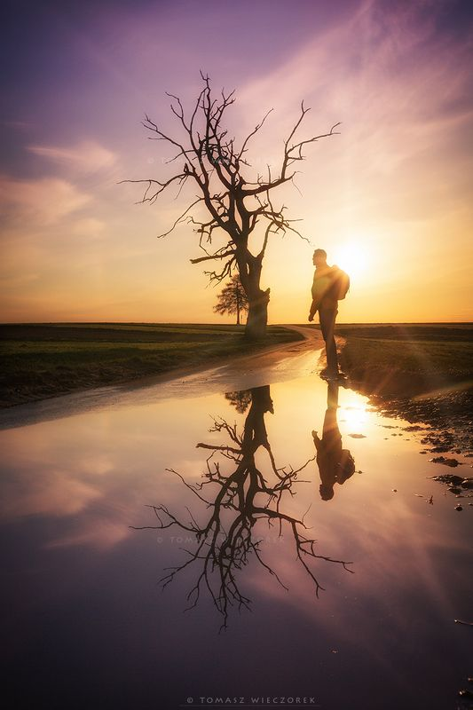 landscape, poland, light, spring, awesome, amazing, sunrise, sunset, lovely, nature, travel, reflection, trees, water, sun,clouds Lonelinessphoto preview