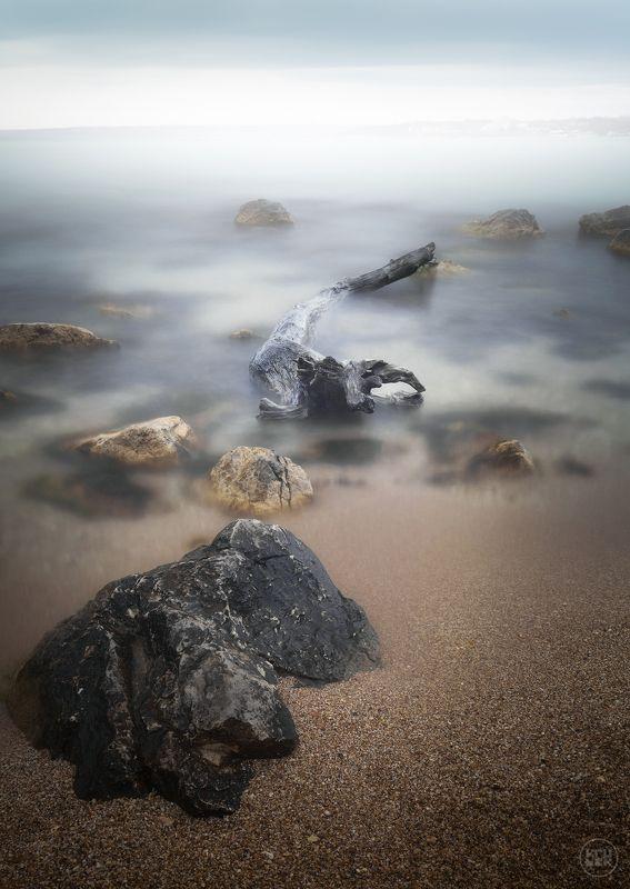 черное море, крым, севастополь Черноморское чудищеphoto preview