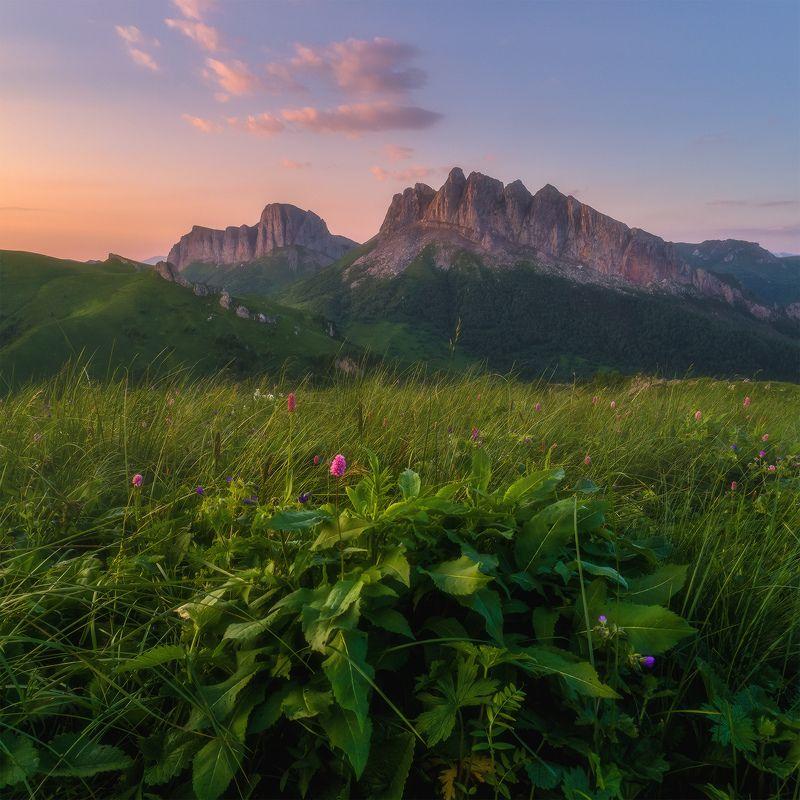 западный кавказ, ачешбок, лето, рассвет Зелёно розовое утроphoto preview