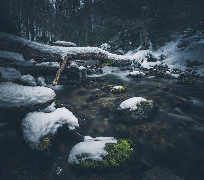 #landscape#nature#winter#woodland#river Woodland scenaryphoto preview