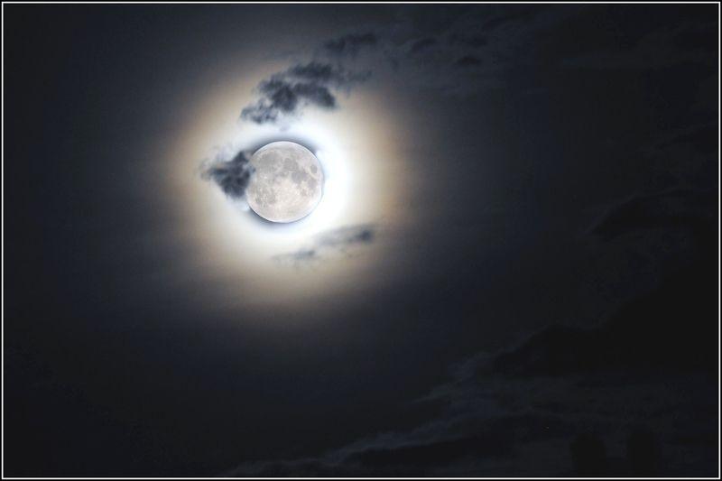 Свет луныphoto preview