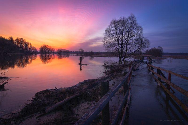 туман, московская область, утро, природа, пейзаж, весна, рассвет, солнце Перед рассветом на р. Шерна во время весеннего половодьяphoto preview