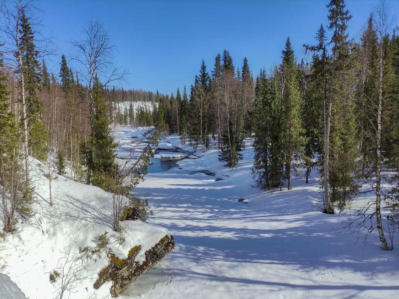 коми,изъяю,тайга,джинтуй,лес На весенних скалах Джинтуяphoto preview