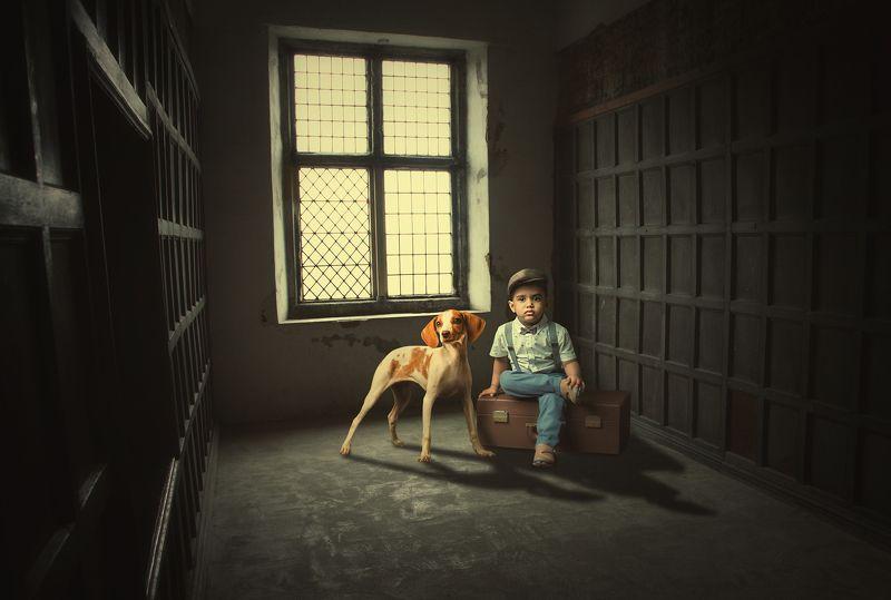 мальчик, собака, чемодан *****photo preview