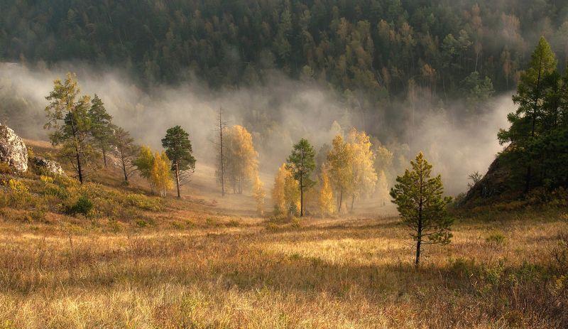 осень, торгашинский хребет. Осенний утренний тман.photo preview