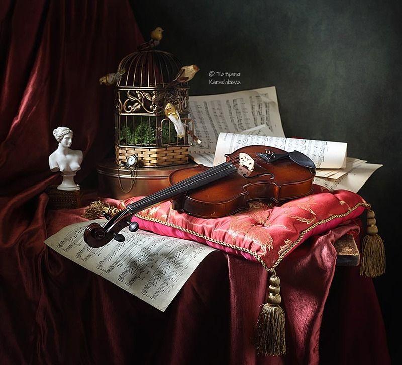 натюрморт, скрипка Скрипкаphoto preview