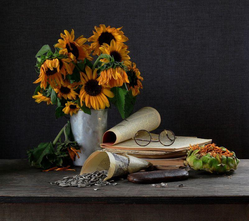 натюрморт, фотонатюрморт, осень, семечки,  подсолнух, наталья казанцева В октябреphoto preview
