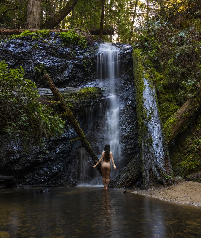 nude forest fine art Waterfallphoto preview
