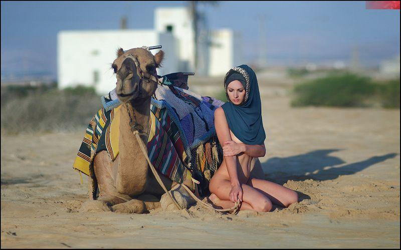 camel, desert, Titanic of the desert ©photo preview