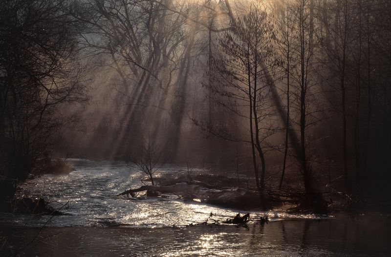 туман, свет, утро, природа р. Крушма, Тульская обл.photo preview