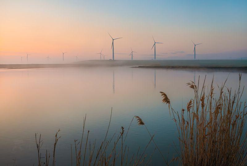 ставропольский край, ставрополье, кочубеевская вэс, ветропарк, ветроэлектростанция, ветряки, невинномысск, апрель, весна, пруд, водоём, туман, туманный, тростник, Рассвет в ветропаркеphoto preview