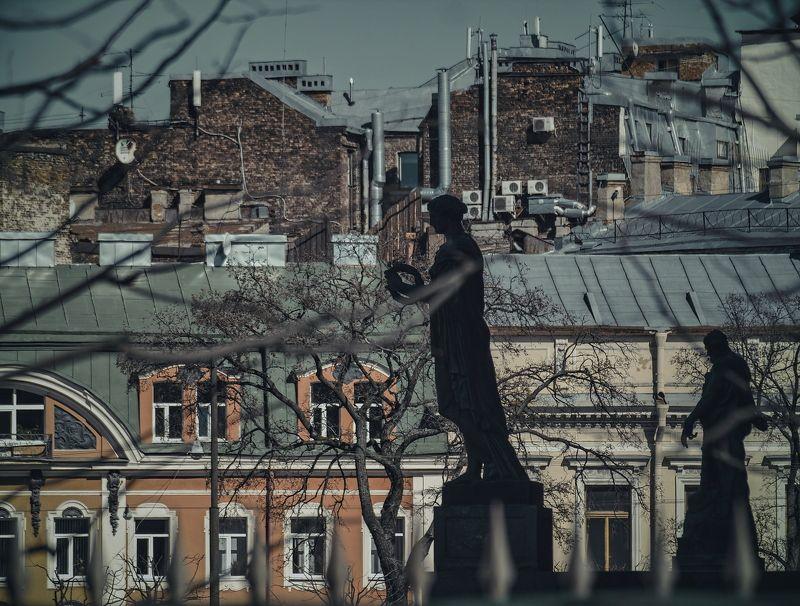 дерево, окна, силуэт, силуэты, скульптура, скульптуры silhouettesphoto preview