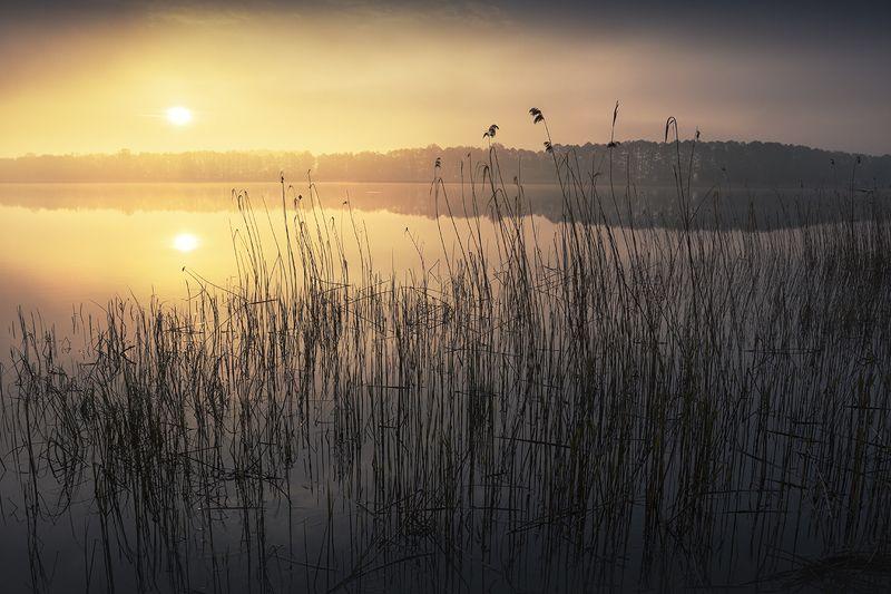 Memories of Masurian lakesphoto preview