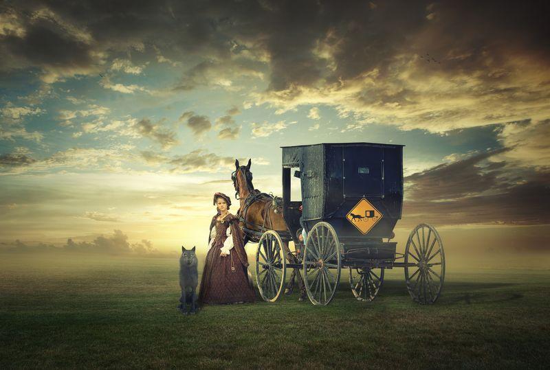 девушка, поле, карета *****photo preview