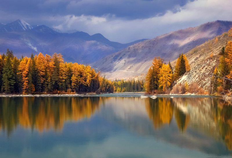 горный алтай,осень,река аргут Тихая заводь...photo preview