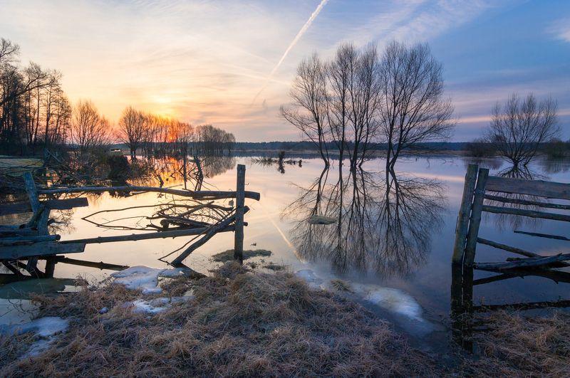 туман, московская область, утро, природа, пейзаж, весна, апрель, солнце, половодье Половодье на р. Шернаphoto preview