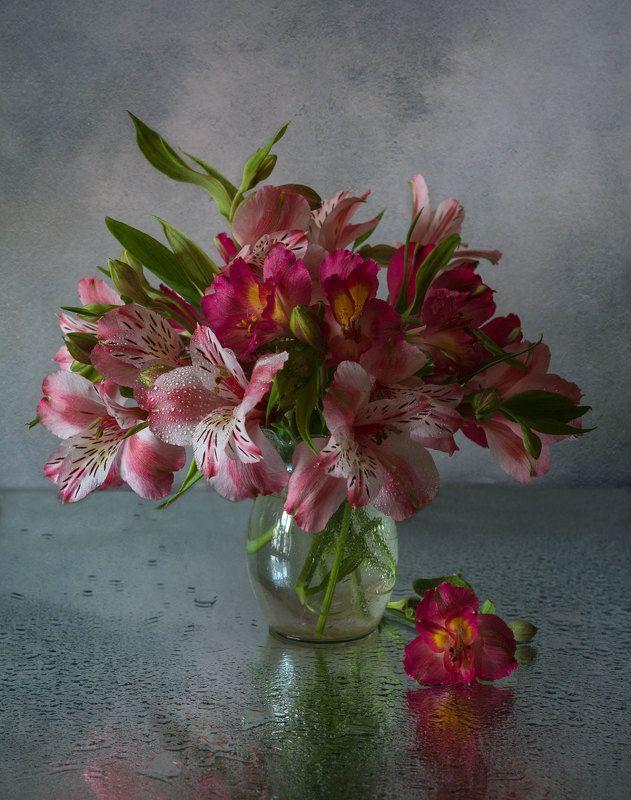 цветы,капли,букет,натюрморт Дождьphoto preview