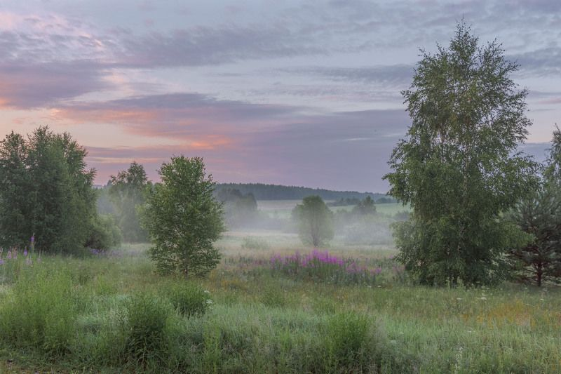 Фототуры с Владимиром Рябковым, #topnature #russpasibo #magic_shots #lovelyRussia #sunset_vision #exclusive_sky  #exclusive_shots #loves_russia2 #photoarena_nature #nature_sultans #nature_perfection #rsa_sky #rsa_sunset #photorussia #rsa_naturepics #sunse Утренний сон...photo preview