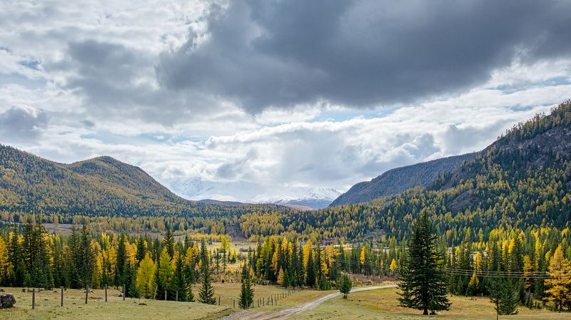 пейзаж, горы, осень, Горный Алтай Про Горный Алтай photo preview
