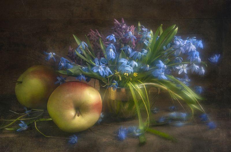 пролеска,цветок,доска,деревянный,чашка,текстура,яблоки,мягкость Лесной букетикphoto preview