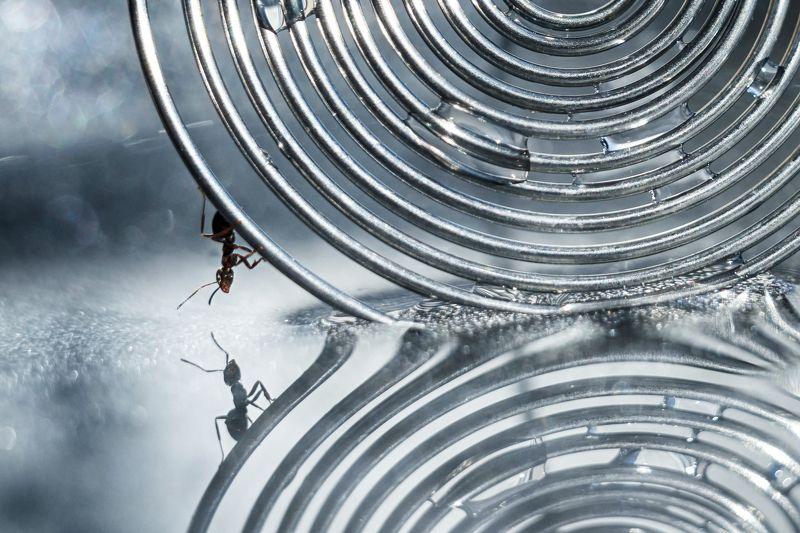 Параллельные миры. Или путешествие по замкнутому кругу...photo preview