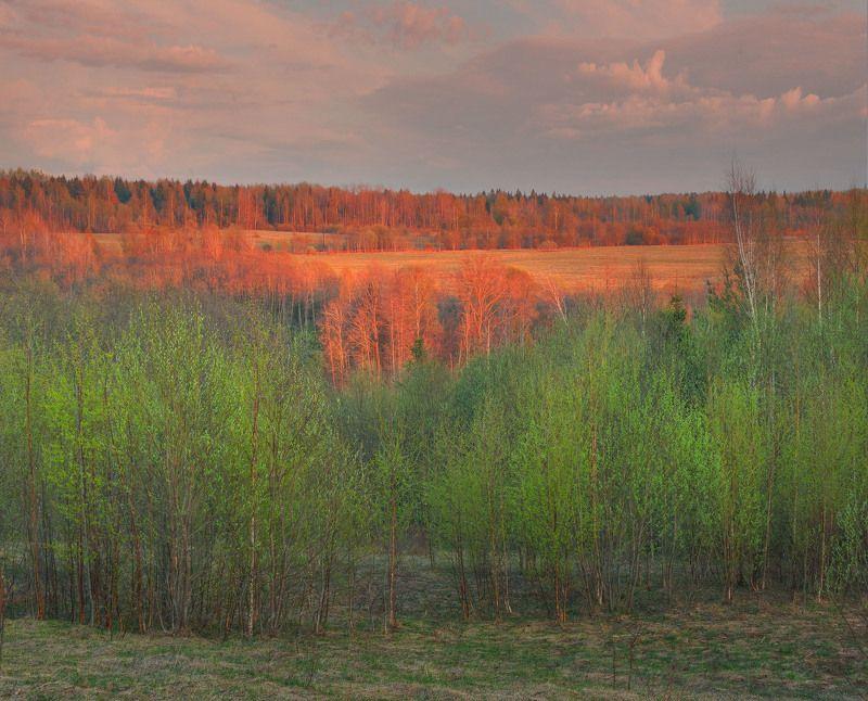 Фототуры с Владимиром Рябковым, #topnature #russpasibo #magic_shots #lovelyRussia #sunset_vision #exclusive_sky  #exclusive_shots #loves_russia2 #photoarena_nature #nature_sultans #nature_perfection #rsa_sky #rsa_sunset #photorussia #rsa_naturepics #sunse Первая зелень.photo preview