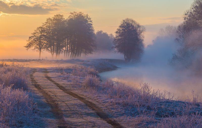 Апрельское утро №4photo preview