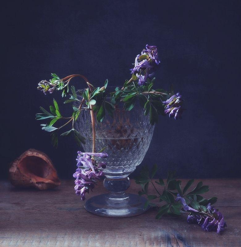 натюрморт,весна,цветы,первоцвет,хохлатка с хохлатками...photo preview