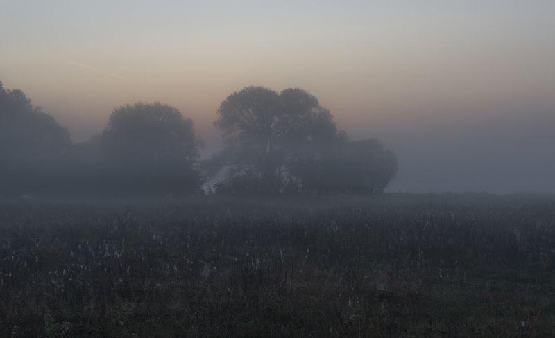 растворяясь в  туманах...photo preview