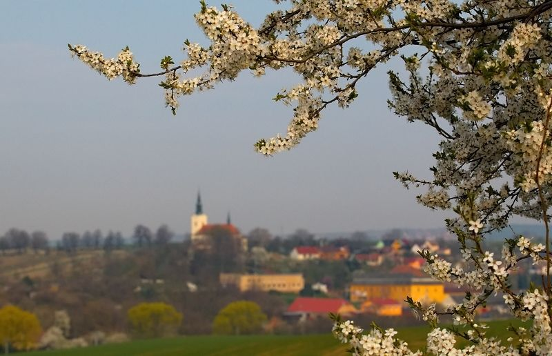 south moravia Kostelec u Kyjovaphoto preview