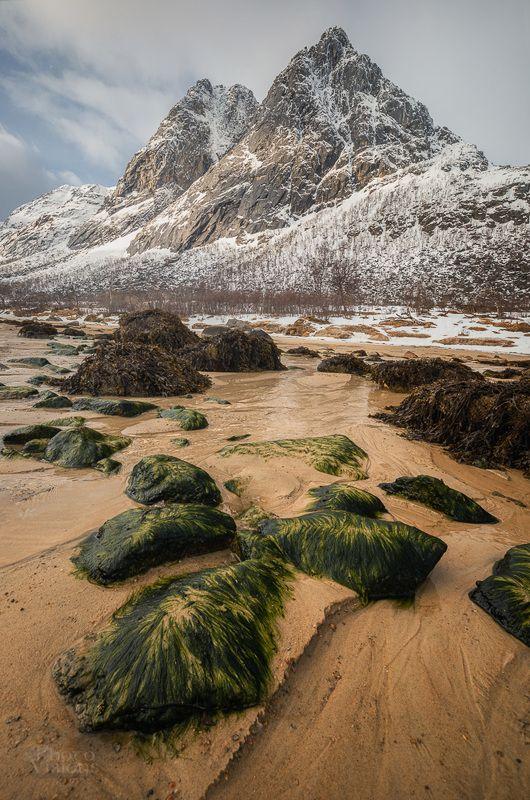 norway,norwegian,beach,mountains,springtime,tromso,northern, arctic On the Beachphoto preview