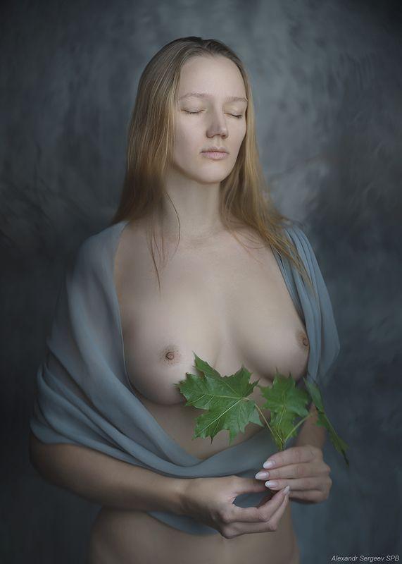 девушка,обнажённая,красота,нежность,гармония,настроение Девушка с листьями клёнаphoto preview
