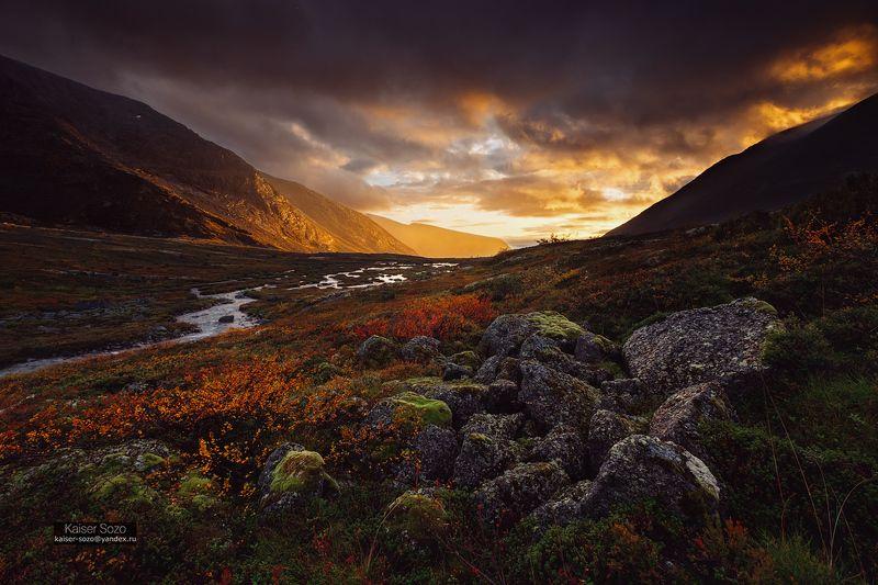 кольский, полярный круг, хибины, золото, золотая осень, камни, берёзы, закат, дождь Cумрачное золото Кольскогоphoto preview