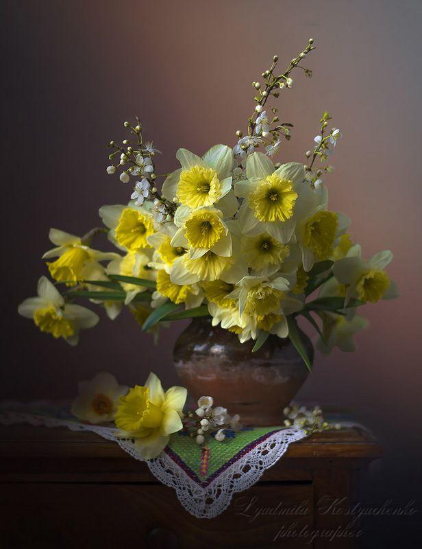 художественное фото,натюрморт,букет с цветами,весна,нарциссы.. Нарциссы в горшочке.photo preview