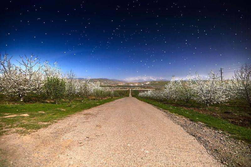 Сказочная ночь… Гиссар. Таджикистанphoto preview