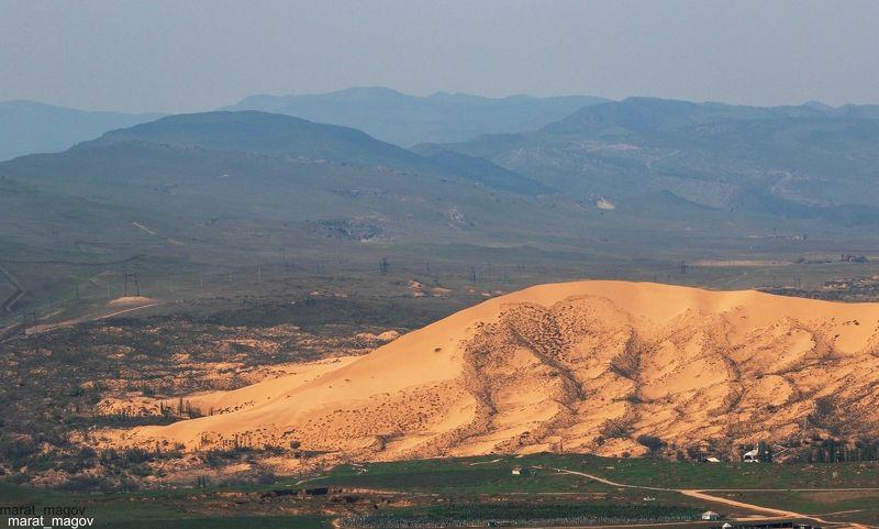 сары кум,песок,гора.природа,деревья,горы,пустыня,дагестан. С видом на Сары кум.. (Жёлтые пески..)photo preview