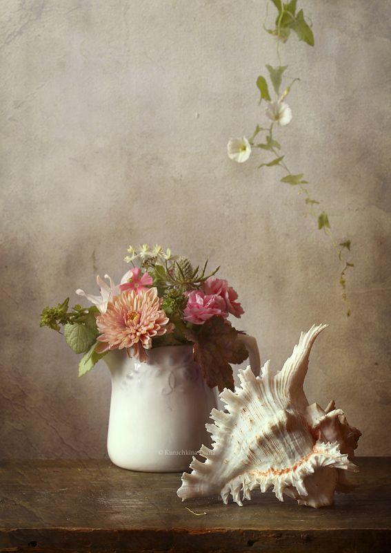 натюрморт, цветы, ракушка с ракушкойphoto preview