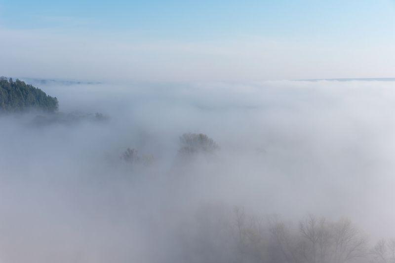 крапивенское городище, рассвет, туман Ёжик в туманеphoto preview