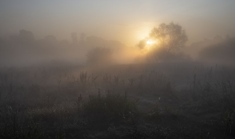 утопая в осенних туманах...photo preview