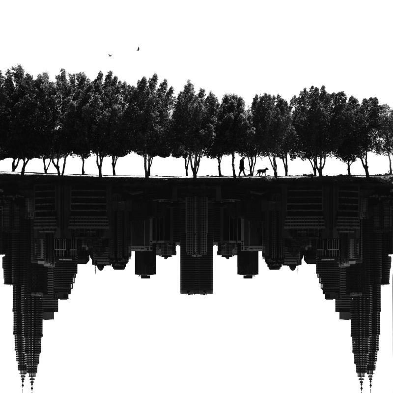 Nature vs Cityphoto preview