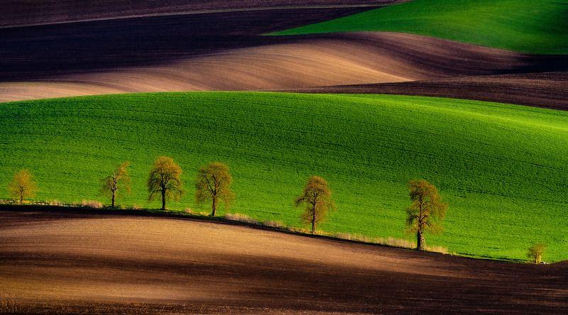 moravie tuscony, landscape, nikon, spring, sunshine, sun Southern Moraviaphoto preview