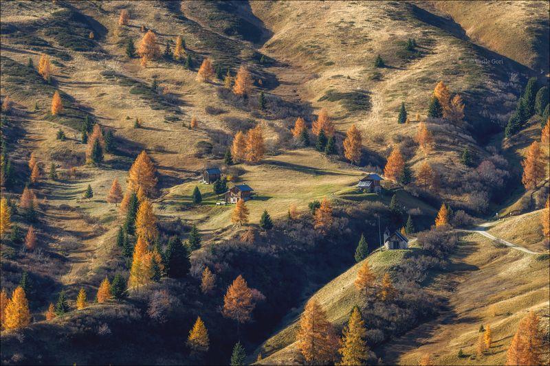 доломитовые альпы,свет,passo giau,осень,вечер,италия,alps,пейзаж,лиственицы \