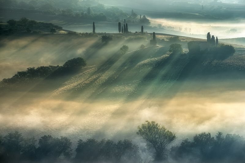 THE VALLEY OF FOGSphoto preview