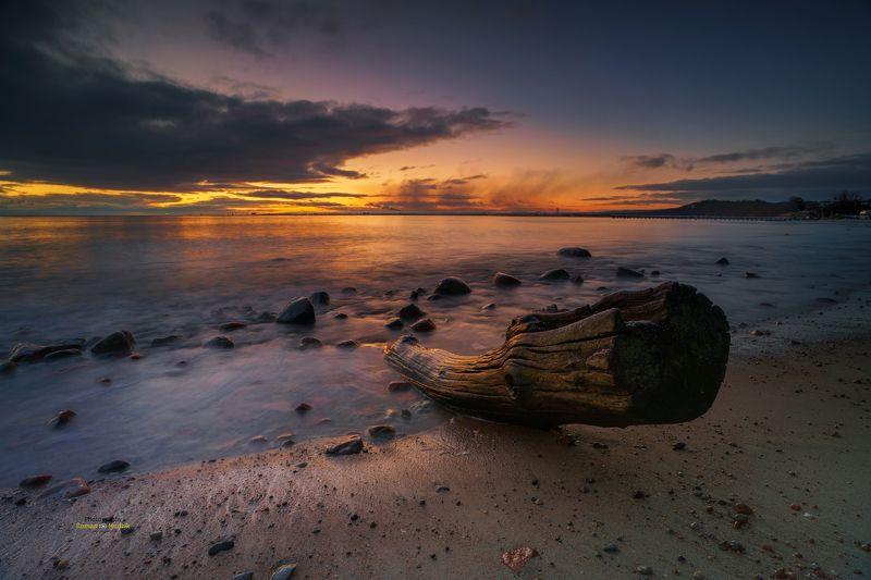Gdynia, Poland, landscape, Baltic Sea, sea, sky, sunrise, colors, colorful sky, clouds, sea shore, tree, Gdynia Orłowo.  фото превью
